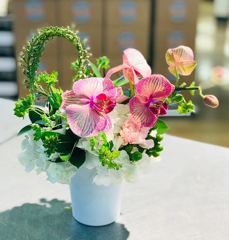 bereavement, orchid, phalaenopsis, hydrangea, veronica
