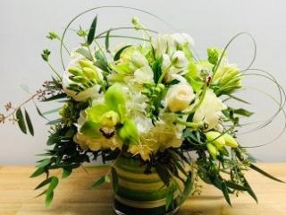 housewarming, congrats, rose, orchid, cymbidium, hydrangea, alstroemeria, freesia, lisianthus