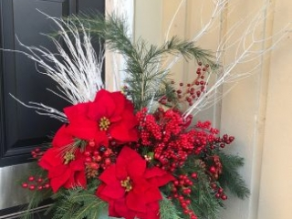 holiday, christmas, poinsettia, berry
