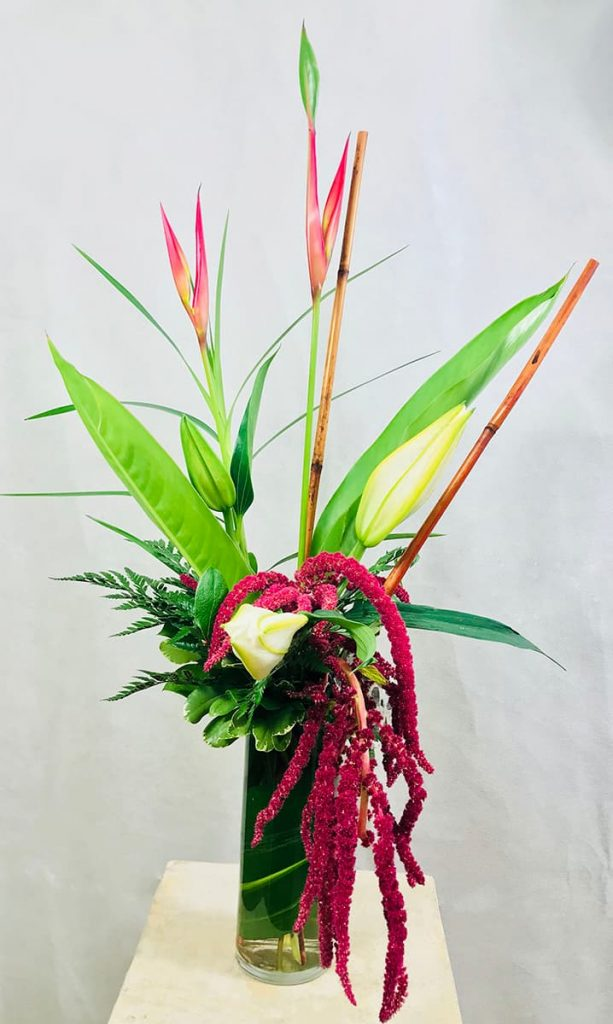 congratultation, congrats, lily, little bird of paradise, tropical, amaranthus