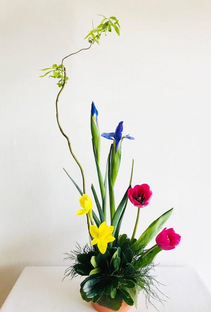 wedding, anniversary, tulip, daffodil, iris