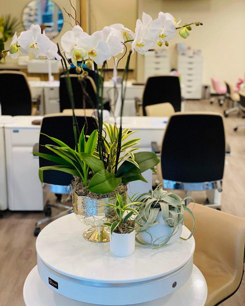 Orchid Arrangement [318]