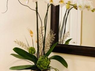 Orchid Arrangement [317]